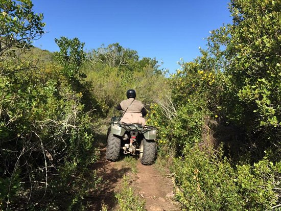 Fun times Quad Biking in Wilderness and Mossel Bay. Teambuilding. Paintball Games.