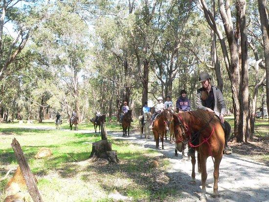 Zia Park Equestrian Centre Gidgegannup 旅游景点