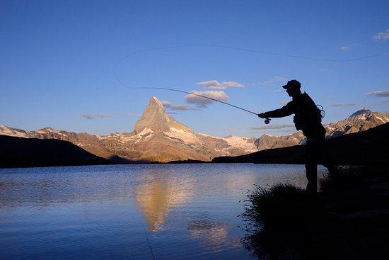 Fly Fish Zermatt: sunrise cast