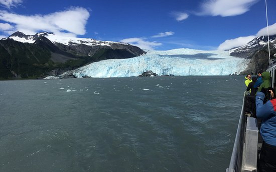 ‪‪Kayak Adventures Worldwide - Day Trips‬: Aialik glacier from the water taxi.‬