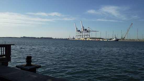 Port Canaveral, FL: view from Restuarant