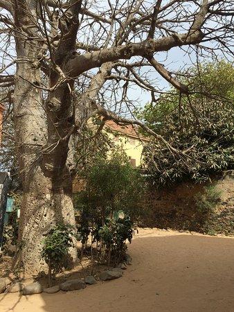 La Maison des Esclaves : Lovley island witnessed sad pages of human history