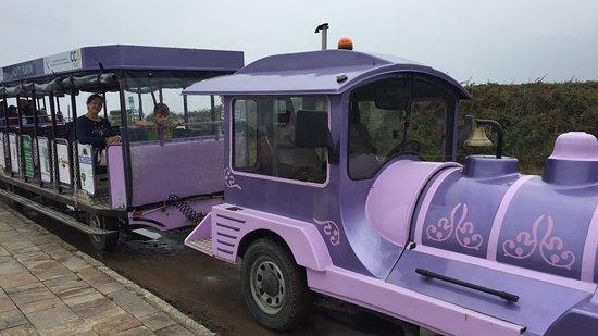 Tren Turistico Cultural de Ribadeo