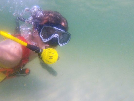 Saint Pete Beach, FL: The easiest way to experience the world of diving!  Minimum age is 8 - and you're NEVER too old!
