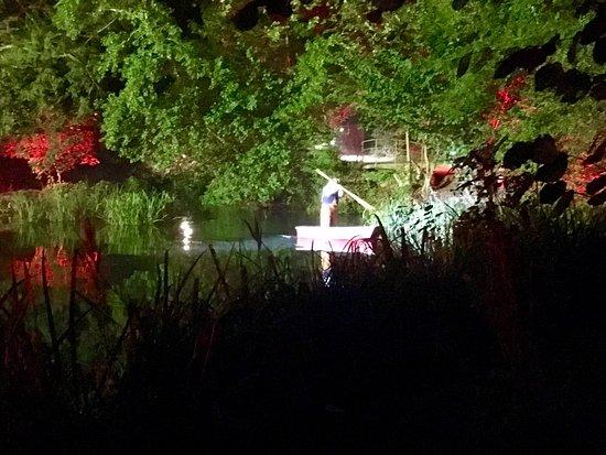 Jardin Botanico Atlantico : Espectacular la noche mágica del jardín botánico de Gijón.