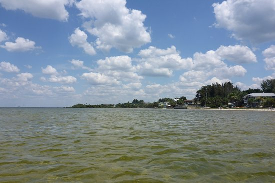 Spring Hill, FL: View back up Pine island
