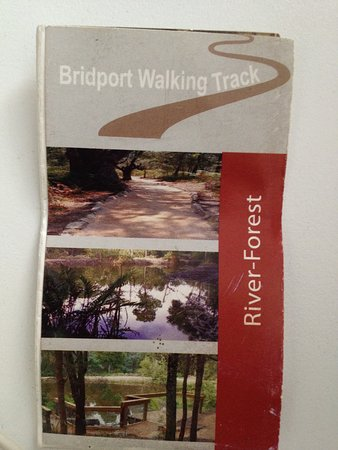 ‪‪Bridport‬, أستراليا: There's a walk brochure available from the Bridport (Information) Pavillion.‬