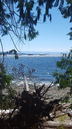 Powell River, كندا: Water on one side of the trail, forest on the other