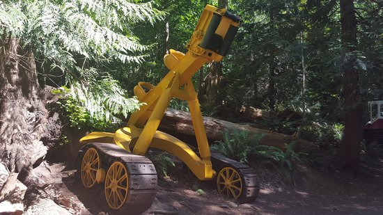 logging equipment - Picture of Willingdon Beach Trail, Powell River
