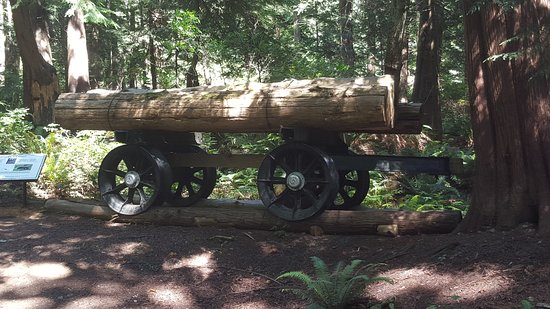 Powell River, Canada : old logging equipment along the trail