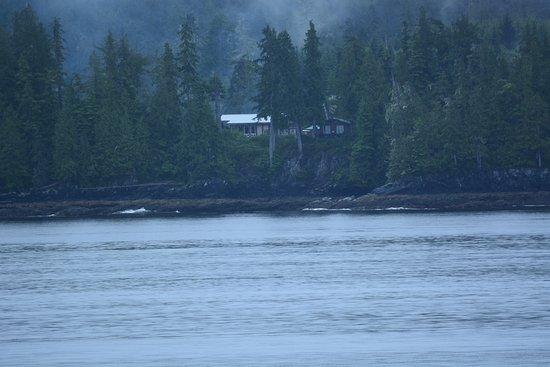 Port Hardy Picture