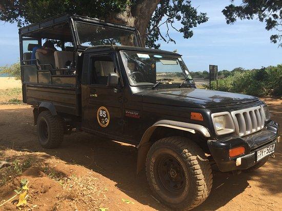 Tissamaharama, Sri Lanka: Yala