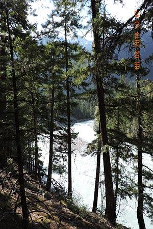 Nairn Falls Provincial Park: 溪底很多大小石,使溪水更加泡泡的