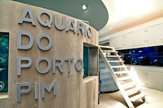 Aquário de Porto Pim