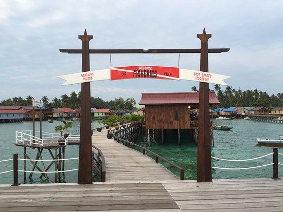 Derawan Islands, Endonezya: Deck