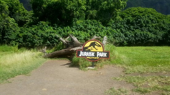 Kaneohe, Hawái: Log from Jurassic Park
