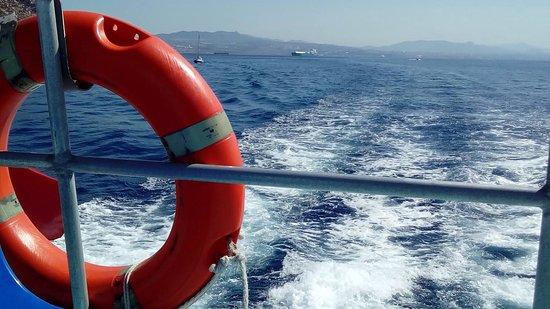 Carry-le-Rouet, France : Bateau l'Albatros