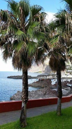 Manuel Tours: Camara de Lobos Madeira