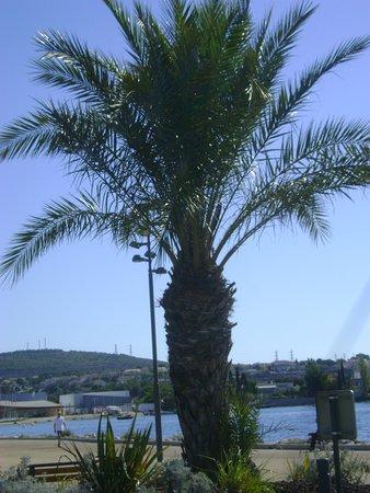 Office de tourisme balaruc les bains 2019 ce qu 39 il faut savoir pour votre visite tripadvisor - Office du tourisme balaruc ...