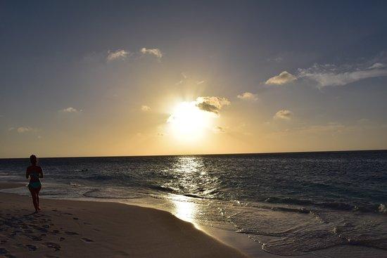 Bucuti & Tara Beach Resort Aruba: photo1.jpg