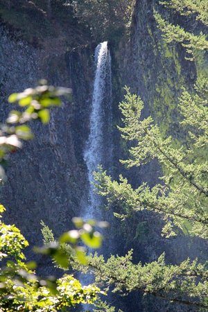 Troutdale, OR: Latourell Falls - there is a steep walking path to get a closer look.
