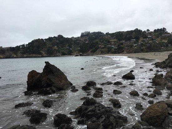 Muir Beach, Californië: photo2.jpg