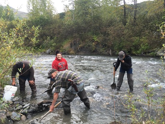 Talkeetna, AK: Gold mine adventure in the Yetna (Cache Creek) mining district