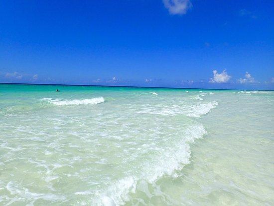 Gold Rock Beach: photo0.jpg