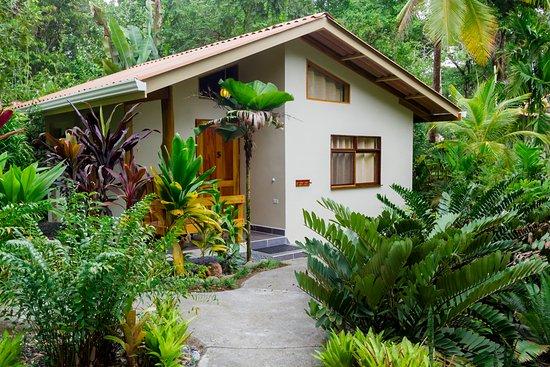 Pavones, Costa Rica: La Iguana