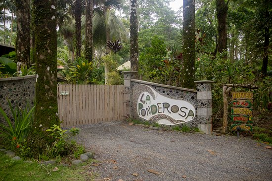 Pavones, Costa Rica: La Ponderosa