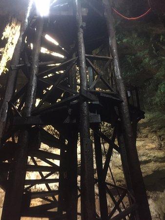Cenotes Tamcach-Ha & Choo-Ha: Escada para entrar no cenote e também trampolim