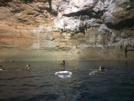 Cenotes Tamcach-Ha & Choo-Ha: Cenote