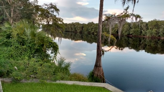 Suwannee Gables Motel and Marina: The Suwanee River as seen from the rear of motel