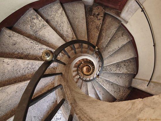 La scala a chiocciola foto di basilica di santa maria for Scala a chiocciola di 5 piedi