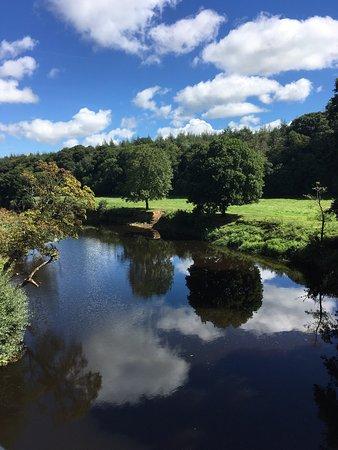 Devon, UK: Between Bideford and Torrington