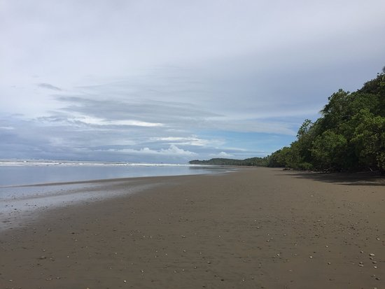 Province of Puntarenas, Kosta Rika: Playa