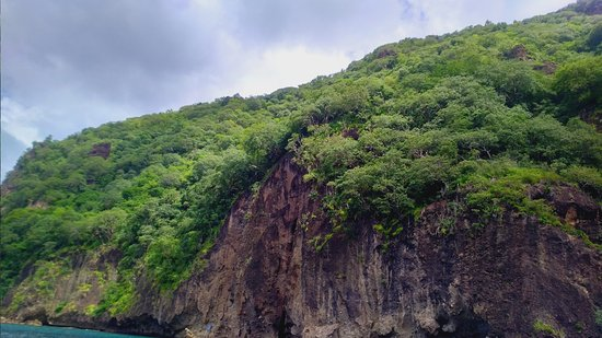 Vieux Fort, Saint Lucia: Bat Crack