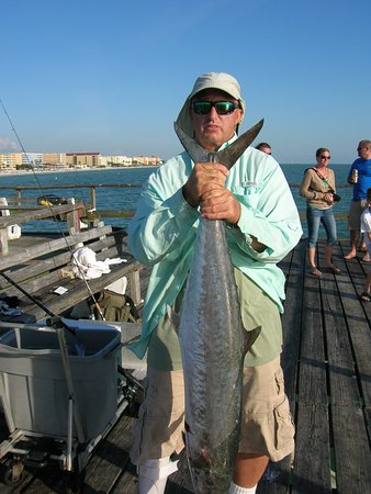 Redington Shores, FL: fall kingfish