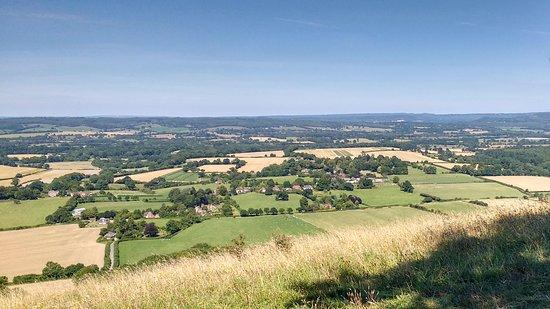 South Harting, UK: Hartington Down looking north