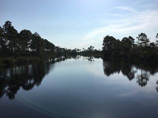 Perdido Key, FL: photo2.jpg