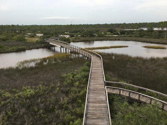 Perdido Key, FL: photo4.jpg