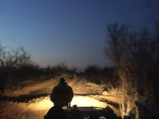 Balule Private Game Reserve, Güney Afrika: photo8.jpg
