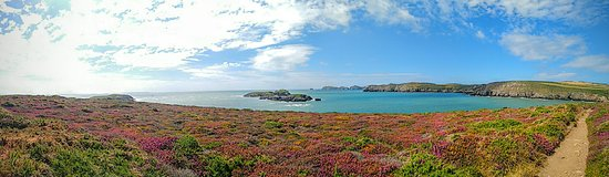 St. Davids, UK: Panoramic view of coastal walk in Porth Clais.