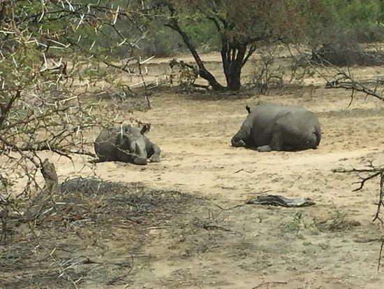 Nelspruit, Sudáfrica: photo4.jpg