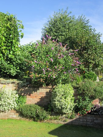 Great Wishford, UK: garden