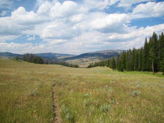 Gallatin Gateway, MT : Beautiful scenery!