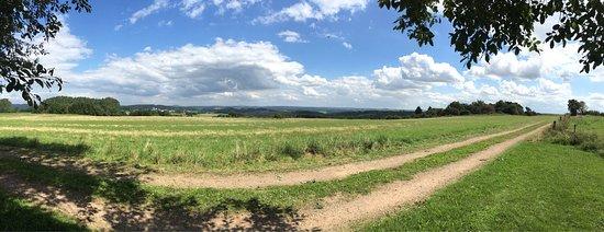 Stadtkyll, Deutschland: Wirfttal