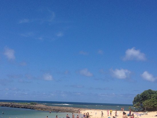 Turtle Bay Beach : Great day out in the sun
