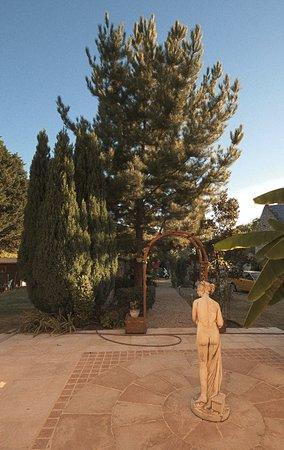 La Maison De Pierre: un parc privé agréable pour les clients