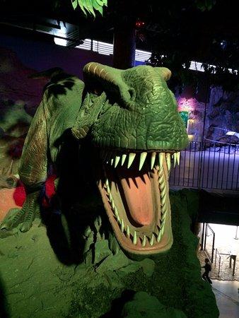 DinoPark Liberec: Gefährliche Tiere